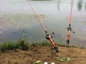 海竿钓鱼小药也很重要