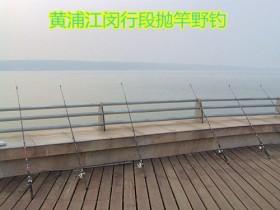 黄浦江野钓草鱼河鳗鱼