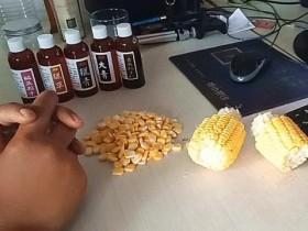 速拔小药泡玉米粒钓大鱼视频
