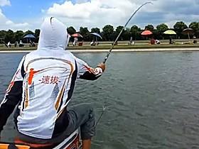 夏季钓鲤鱼