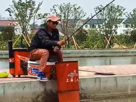 使用颗粒料黑坑钓回锅鲤鱼上饵手法