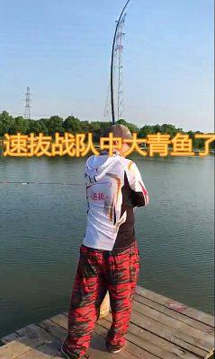 青鱼杀手系列小药介绍