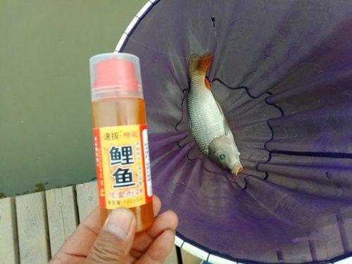 速抜鲤鱼促食剂2号