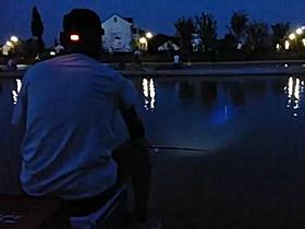 速拔哥野钓鲫鱼连杆上鱼视频