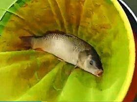黑坑钓鲤鱼钓回锅鱼换位置就连杆