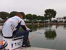 快速拔鱼鲤鱼鲫鱼技巧钓鱼比赛两场