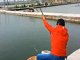 速拔哥钓滑鱼放口摘口