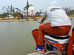 速拔哥钓滑口鲤鱼